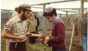 ארי גרינספן וארי זיבוטופסקי שוחטים פסיון באמריקה ב1983